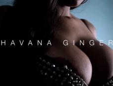 Havana Ginger in Nylon Honey Clip#1
