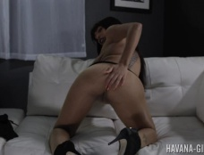 Havana Ginger in Nylon Honey Clip#2
